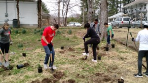 Mission Madness students planting pawpaws, elderberries, boxwoods, and blackberries.