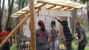 Mission Madness students painting the chicken coop at the Urban Farm