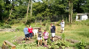 Children and helpers who joined us to weed and help at the Urban Farm