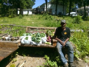Some of the food harvested one day in the early summer with a harvester