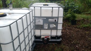 Two 275 gallon cisterns bought for rainwater collection and storage at the Urban Farm