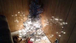 a Christmas tree in one of the houses connected to Grace and Main